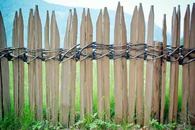 Латвия отгородится забором не только от России, но и от Белоруссии