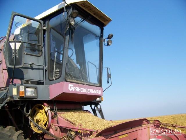 Алтайский зерновой рынок замер в ожидании «инопланетян»