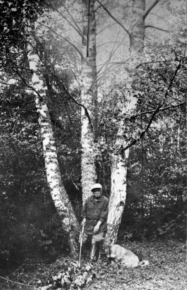 В. А. Гиляровский в Картино. 1929—1930-е гг