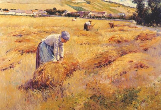 Рекордный урожай обернётся на следующий год банкротством вместо посевной?