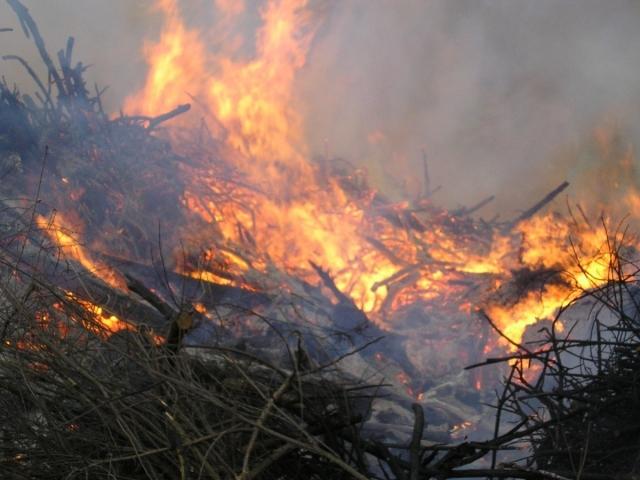 Введённый из-за лесных пожаров режим ЧС снят в Приморье