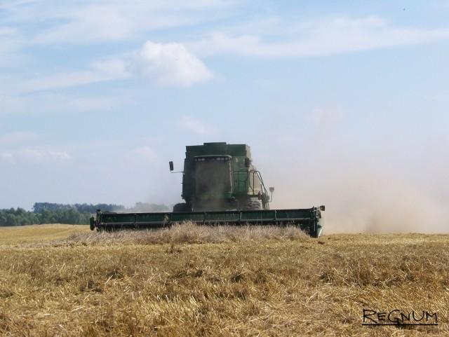«Наглеют на горе крестьянском»: аграрии готовятся к банкротствам