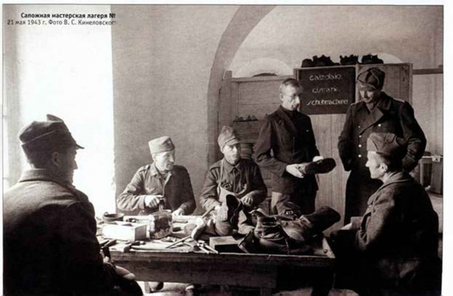 Правда «Сталинградского плена»