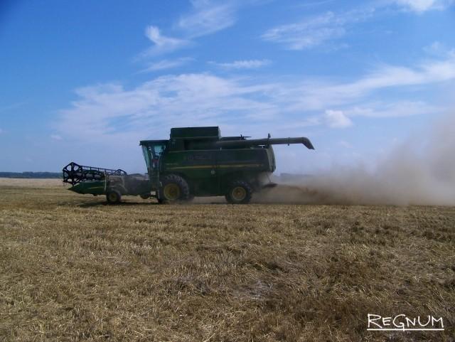 Алтайские фермеры вынуждены сокращать посевные площади