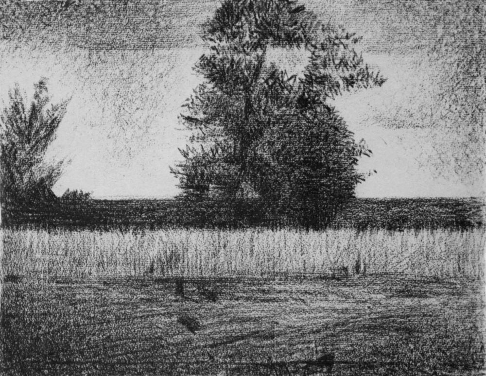 Жорж-Пьер Сёра. Дерево. 1881