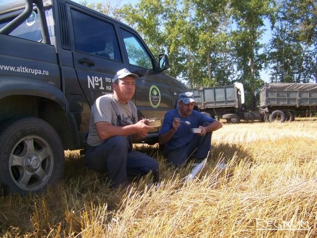 Сибирские аграрии затягивают пояса, а трейдеры улучшают свой бизнес