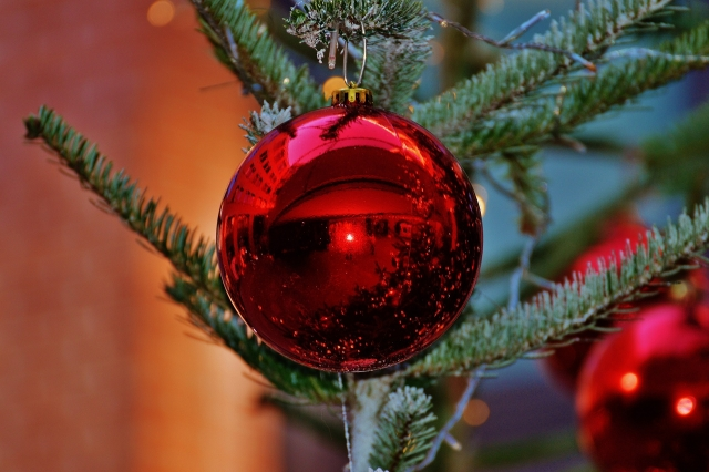 Мэр просит калининградцев «дать пинка» ворам уличных новогодних украшений