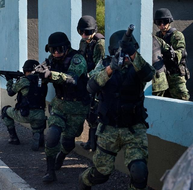 Парламент Мексики разрешил использовать армию в войне против наркомафии