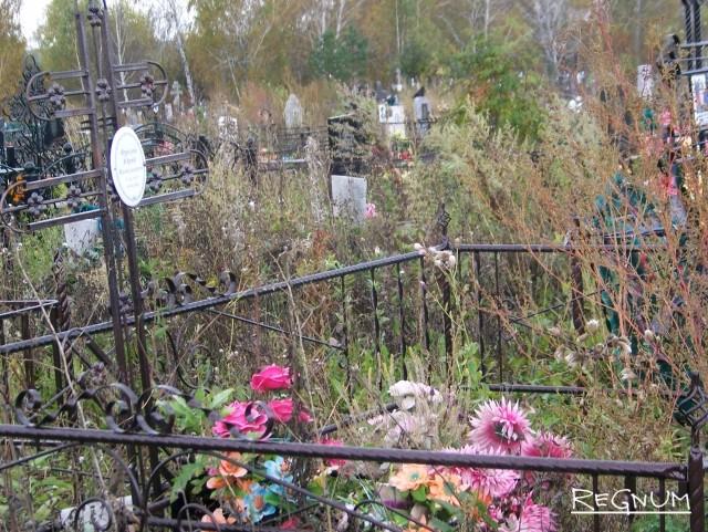 Кладбищенское запустение