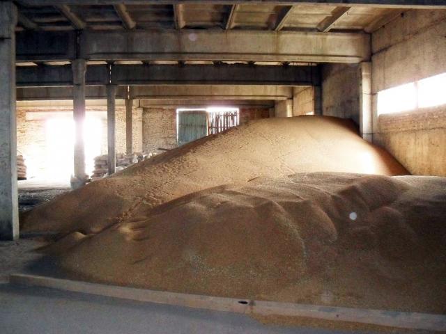 Зерно в амбаре