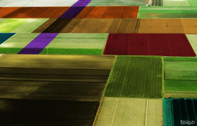 Дальневосточные гектары: дальше выделения участков дело зачастую не идёт