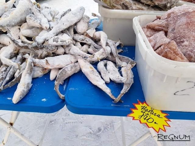 «Золотая» рыбка Сахалина: навагу островитянам продают с наценкой 670%