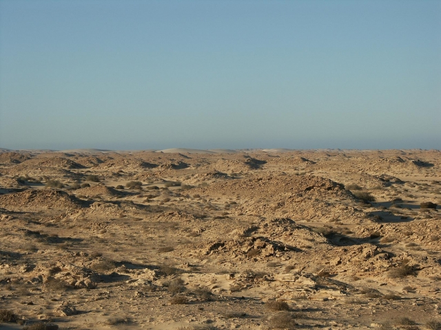 Freedom House констатирует ухудшение ситуации с правами в Западной Сахаре