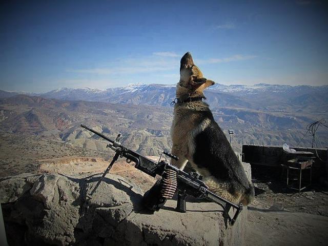 Афганистан на грани взрыва