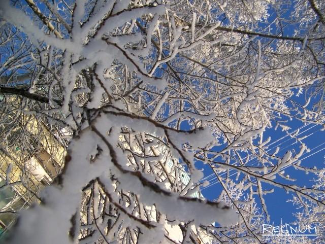 Сибирь. Зимнее великолепие