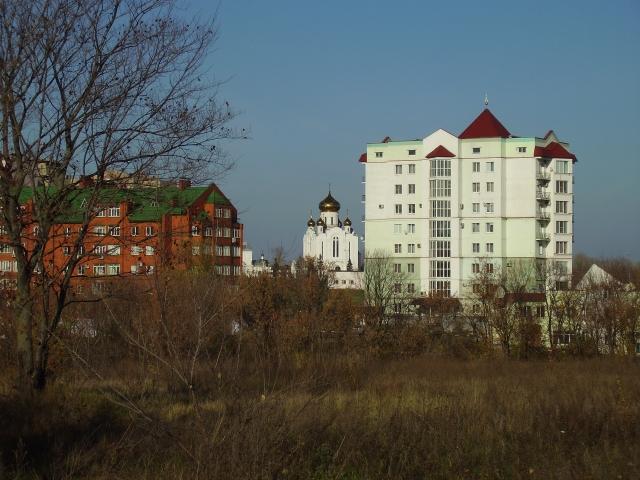 Старый Оскол. Вид из-за домов на храм Рождества Христова