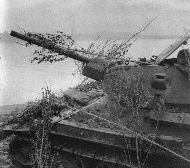 Советский танк Т-34 на позиции у реки Дон
