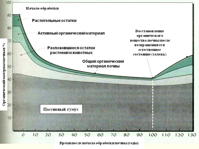 Деградация и восстановление почвы
