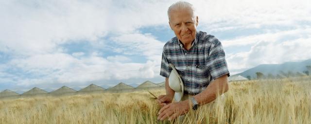 Номан Борлауг — отец «зелёной революции», лауреат Нобелевской премии мира 1970 года