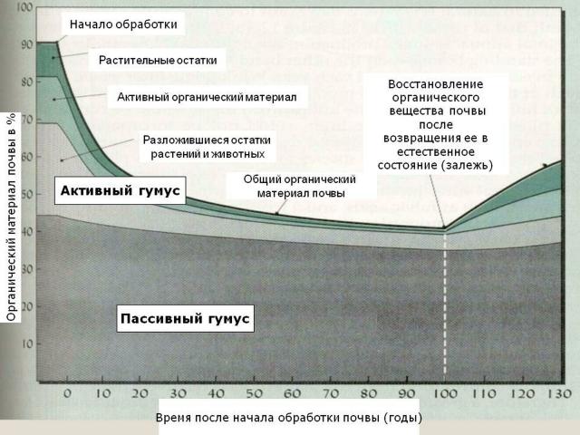 Процесс деградации и восстановления органического вещества почвы
