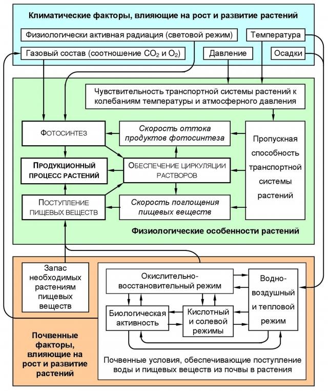 Рис. 4. Факторы, от которых зависит продукционный процесс растений