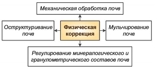 Рис. 5. Основные мероприятия физической коррекции
