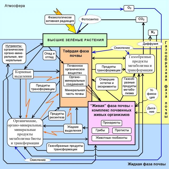 Биологизация — путь к выходу земледелия из нарастающего почвенного кризиса