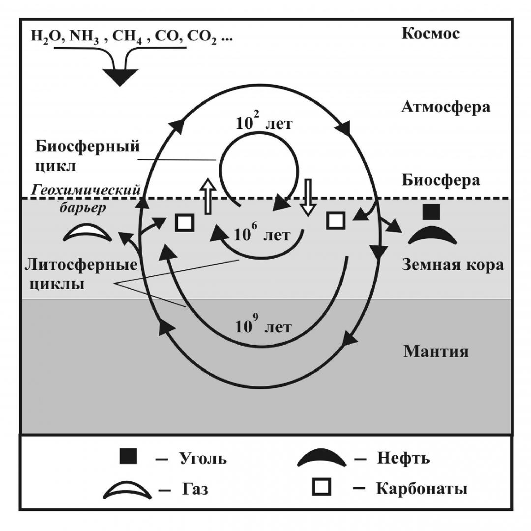 Рис. 2. Схема геохимического круговорота углерода на Земле в соответствии с биосферной концепцией