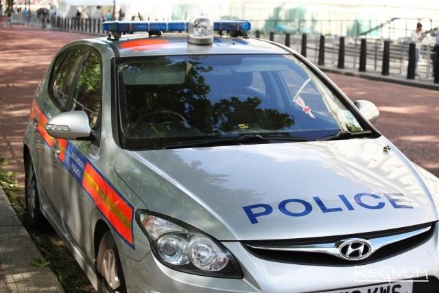 Пьяному гавайцу не простили нападения на полицейских в Лондоне