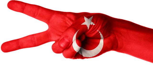 Йылдырым: Турция с Сирией не воюет