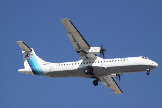 Пассажиры и экипаж разбившегося в Иране самолета погибли