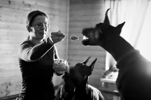 Специальную витаминизированную смесь собаки предпочитают есть с ложечки