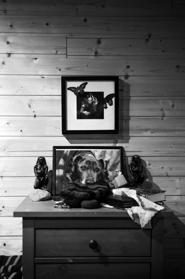 На комоде в прихожей Таниного дома — фотография Брюса. Шесть лет назад Таня забрала его из Зеленоградского приюта. Старичок-питбуль умер у Тани на руках 8 января 2017 года