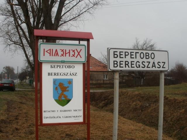 Венгрия не хочет видеть в Закарпатье украинских военных и НАТО
