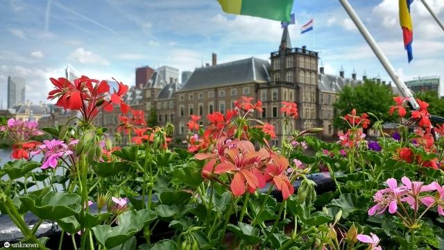 Армения высоко ценит признание парламентом Нидерландов Геноцида армян