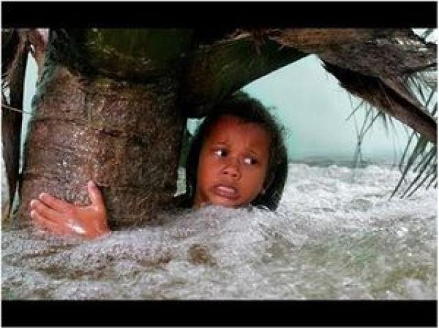 Рис. 33. Кадр из фильма о цунами 26 декабря 2004 года