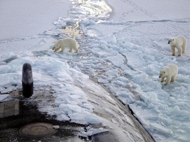 «Ничего особенного»: подлодка Hartford застряла в арктических льдах