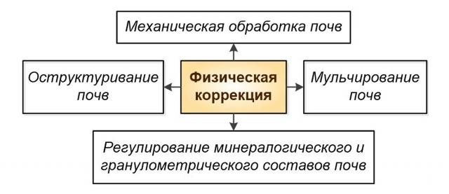 Основные приёмы физической коррекции