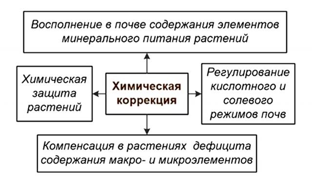 Основные приёмы химической коррекции