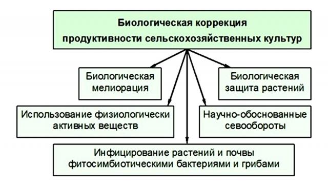 Виды мероприятий биологической коррекции продуктивности