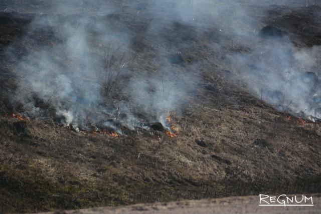 Гори, гори ясно: Центральная Россия в дыму