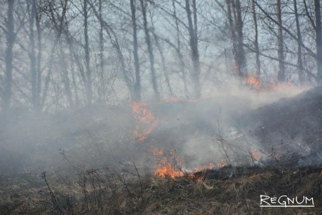 В некоторых регионах палы на сельхозземлях уже привели к лесным пожарам