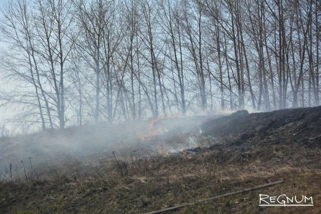 За неделю в Белгородской области произошло 100 случаев загорания сухой травы и мусора