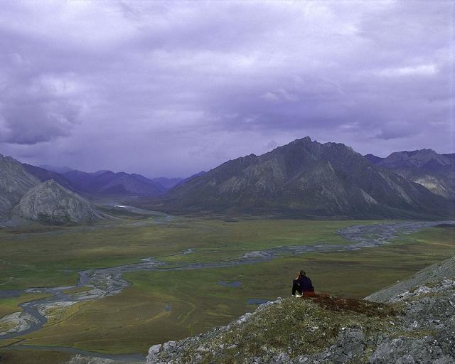 Арктический национальный заповедник. Аляска
