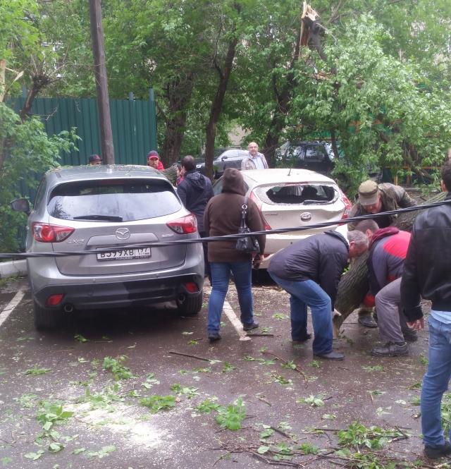 СК проводит проверку после гибели ребенка во время урагана в Москве