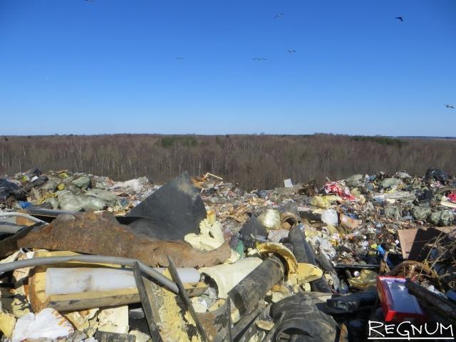 Совбез России должен вмешаться в «мусорный кризис» Подмосковья