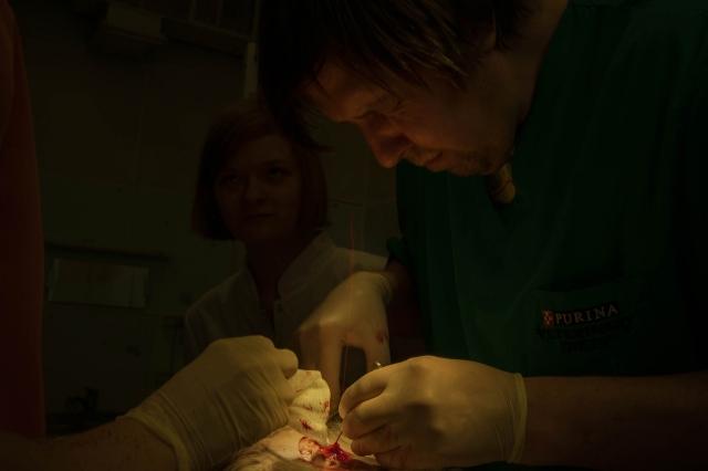 Во время операции струя крови брызнула хирургу в лицо