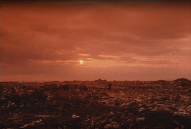 Новые свалки в Подмосковье грозят повторением пожаров 2010 года