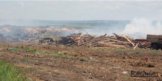 Многие населенные пункты Предбайкалья окружены свалками опилок и горбыля