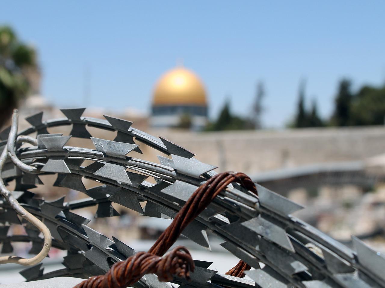 Колючая проволока. Палестина